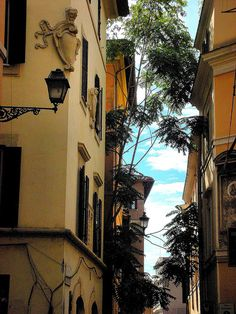 Trastevere. Take me back!