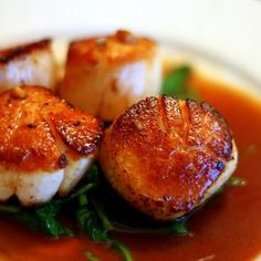All kinds of Scallop recipes