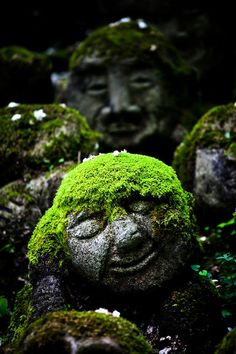 Mossy Jizo statues at Otagi Nenbutsu-ji temple, Kyoto, Japan. For a shady spot inspiration: deserted shrine, with little statues like this. Some of them animate to guard the temple Garden Art, Garden Design, Easy Garden, Statues, Japanese Culture, Garden Inspiration, Garden Sculpture, The Good Place, Temple