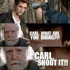 Shoot it now! The walking Dead meets Twilight