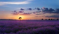 "enchanting-landscapes: "" Paolo Bugnone """