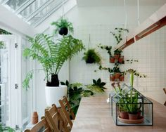 After seeing some of these pictures on Bloesem, I was instantly enchanted by the glasshouse concept for SLA Amsterdam. Patio Interior, Cafe Interior, Interior And Exterior, Interior Design, Interior Plants, Design Interiors, Fuente De Chocolate Ideas, Rue Verte, Chlorophytum