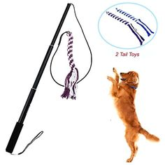 Wellbro Interactive Dog Extendable Teaser Wand with 2 Rope Chew Tail Toy, Small, Black * More info could be found at the image url. (This is an affiliate link) #CatToys