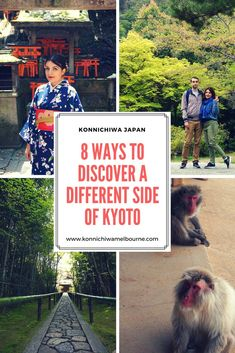 51 million tourists visit Kyoto every year. How do you experience the unique side of Kyoto? Here are my 8 ways to discover a different side of Kyoto.