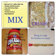 Pet Bird Stuff... Healthy and CHEAP DIY Pet Bird Treats... use popsicle sticks, kebobs, cardboard, or re use old treat sticks.  Just be sure that the material is not harmful. These are great for Cockatiels, Parakeets & Budgies, and all other small parrots.