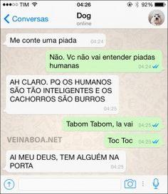 cachorro-whatsapp-16
