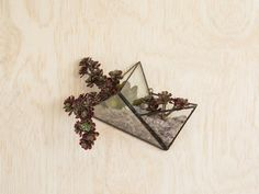 2 tetrahedrons are connected to make this wall hanging terrarium. It can be hung at a couple different angles depending on your preference.