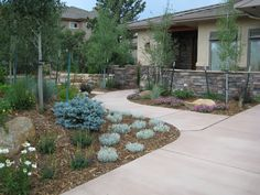 For landscaping in Colorado Springs, hire the experts. Our staff has years of Colorado landscape design experience. Planter Beds, Planters, Drought Resistant Landscaping, Flowering Bushes, Lawn Maintenance, Front Yard Landscaping, Landscaping Ideas, Garden Types, Native Plants