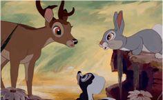 What happens in Spring time according to Bambi. Old Disney, Cute Disney, Disney Magic, Disney Art, Disney Pixar Movies, Disney And Dreamworks, Disney Characters, Disney Fanatic, Disney Addict