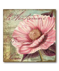Take a look at this Paris Pink Flower II Canvas Wall Art by COURTSIDE MARKET on #zulily today!