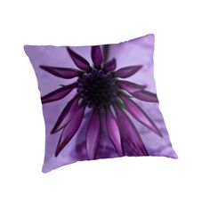 Gazania Flower Macro - Lavender Background  by Sandra Foster