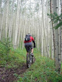 It's no surprise that Aspen is a virtual playground for outdoor activities, but the summer offers so many options it can be tough to choose which one to do. Considering its location — nestled in the Elk Mountain range — the offerings for hiking and mountain biking are plentiful