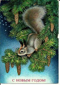 Vintage Russian Postcard - Squirrel -Happy New Year - Congratulation