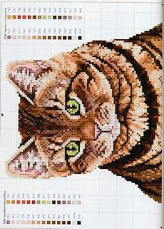 Siamese Cats Needlepoint Pattern From A Magazine NP1