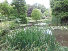 Sir Harold Hillier Gardens #theweddingofmydreams  @The Wedding of my Dreams