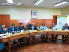 Cauquenesnet.com #DiaNoticias: Concejo comunal de Cauquenes aprobó dineros para p...