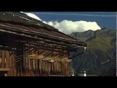 Impressions of Tyrol #feelaustria
