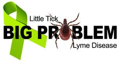 Supported by the Lyme Disease Foundation, Lyme Disease Awareness Month is a campaign which promotes preventative measures which can be taken against Lyme disease.  Learn more about Lyme disease: http://sponauglewellness.com/wellness-programs/lyme-disease/