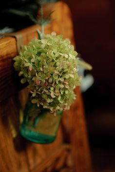 Green hydrangea and white rose balls to hang from the pews in the church Wedding Events, Wedding Reception, Wedding Ideas, Reception Ideas, Weddings, Flowers Nature, Fall Flowers, Summer Wedding, Dream Wedding