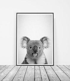 Animal Nursery Decor, Koala Bear Print, Gender Neutral Nursery, Baby Gift, Australian Animal, Playroom Art, Kids Wall Art, Australian Seller by LittleInkEmpire Australian Icons, Australian Gifts, Australian Animals, Bear Print, Baby Prints, Artwork Prints, Printable Wall Art, Fine Art Paper, Vibrant Colors