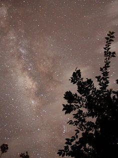 fotografar as estrelas