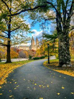 Central Park, New York City, USA (The World, Facebook)