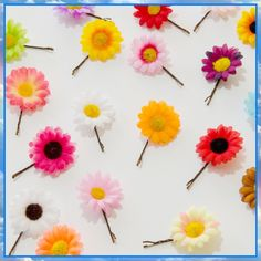 #LUVIT 😍 Colorful Daisy Hair Pins - perfect to wear to festivals / every day 🌼 They look extra LUVly placed along braids 💖 Available at KittyKatrina.com in our Flower Clips and Pins Section 🌸 #hairclip #hairpin #flowerclip #flowerpin #flowerhairclip #festivalfashion #festivalstyle #festivaloutfit #festivalwear #flowerchild #flowerchildren #raveoutfit #ravefashion #ravewear #bohostyle #bohemianstyle #bohohair #bohemianhair #burningmanfashion #burningmanstyle #kawaii #kawaiifashion
