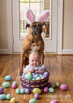 Easter fun! #easter #boxer #FUTUREbaby