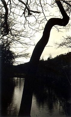 "River Nidd"" (2006)  Tomio Seike (North Yorkshire U.K.)"