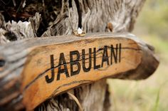 Camp Jabulani offers a completely unique safari wedding experience in a really intimate natural environment. #wedding #weddingphotography #safari #southafrica #campjabulani