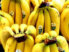 10 alimentos que o fazem ter sono   SAPO Lifestyle