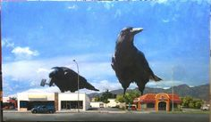 "Coming Soon ""Crows"" 40x68"