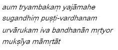 English Version of Mantra & Link to explanation    http://en.wikipedia.org/wiki/Mahamrityunjaya_Mantra