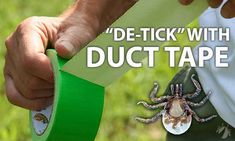 Or for quick tick removal.   23 Simple And Essential Hiking Hacks