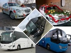 Want help to hire luxury cars and buses in Meerut! O My Celebration is a suitable platform to find the top vendors. You can compare the ratings and pricing of different service providers and contact one that suits you. Mercedes Bus, Luxury Van, Luxury Car Rental, Buses, Volvo, Celebration, Platform, Cars, Top