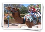 Rajasthan Desert Tours | English Speaking Driver | Camel Safari Desert Tours