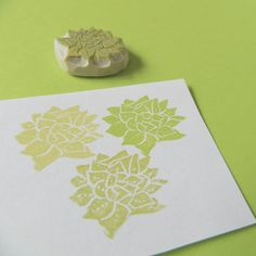 Succulent, would be pretty framed. Succulents Diy, Planting Succulents, Handmade Stamps, Handmade Gifts, Custom Stationary, Reception Party, Save The Date Magnets, Diy Wedding, Wedding Ideas