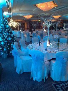 Wedding Evening Reception
