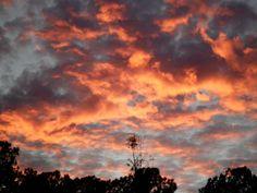 sunset in Wakulla County, Fl.