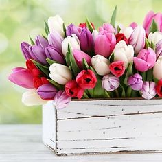 Good Morning Beautiful People, Good Morning Flowers, Good Morning Good Night, Independence Day Gif, Beautiful Day Quotes, Happy Morning Quotes, Vintage Flowers Wallpaper, Purple Tulips, Flower Boxes