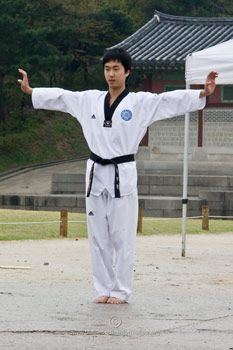Awesome site for Poomsae 1-8 (taegeuk) Includes a written description of each move and videos to watch to learn the form
