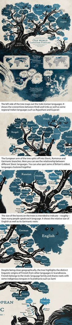 This Amazing Linguistic Tree Reveals How Most Languages Are Connected