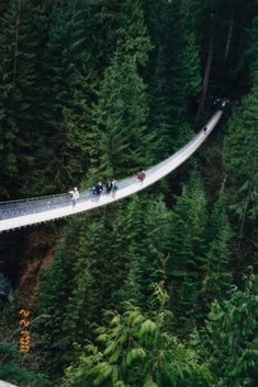 Capilano Suspension Bridge, Vancouver, British Columbia. I'd like to think I'd do this on my visit, but I don't think I have it in me. We'll see.