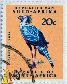Sudáfrica - El Secretario