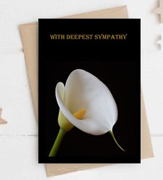 Sympathy Cards,Comfort Card, commiseration card,sorrow card,thinking of you card,Bereavement Card,Loss Card,Sympathy Card,Memory Card,Death Sympathy Cards, Greeting Cards, Funeral Cards, Touch Love, Deepest Sympathy, Bereavement, Feeling Special, Your Cards, Thinking Of You