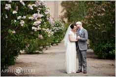 There is a row of pretty lilacs just outside of the Denver Museum of Nature and Science where we created these romantic wedding photos on a nice spring day in Denver, Colorado. - April O'Hare Photography http://www.apriloharephotography.com #ColoradoWedding #DenverWedding #DenverMuseumofNatureandScience #CityParkDenver #MountainViews #DenverWeddingPhoto #Lilac #RomanticWedding