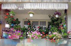 Terrace garden ideas pictures small apartment balcony ideas with pictures balcony terrace garden designs ideas Design Patio, Terrace Garden Design, Small Balcony Garden, Backyard Garden Landscape, Garden Web, Small Backyard Gardens, Balcony Ideas, Balcony Gardening, Small Balconies