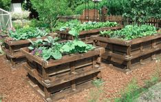 If space is an issue the answer is to use garden boxes. In this article we will show you how all about making raised garden boxes the easy way. Raised Flower Beds, Raised Garden Beds, Raised Beds, Pallets Garden, Wood Pallets, Recycled Pallets, Pallet Wood, Wood Pallet Planters, Wood 8