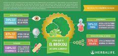 AgroA -- Propiedades del brócoli