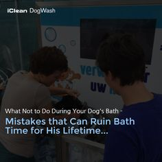 What Not to Do During Your Dog's Bath - Mistakes that Can Ruin Bath Time for His Lifetime...http://goo.gl/x1BK4G or http://icleandogwash.com/ #DogBath ##DogWash #DogWashTips